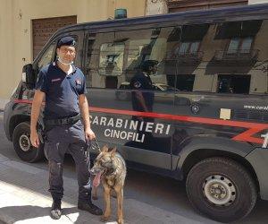 https://www.tp24.it/immagini_articoli/01-07-2020/1593606015-0-trapani-operazione-antidroga-in-centro-due-fermati-nbsp.jpg