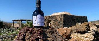 https://www.tp24.it/immagini_articoli/02-03-2021/1614671321-0-il-passito-della-solidarieta-a-sostegno-dei-protagonisti-della-viticoltura-eroica-di-pantelleria.jpg