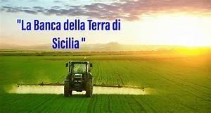 https://www.tp24.it/immagini_articoli/06-08-2020/1596723005-0-nbsp-banca-della-terra-il-bando-della-regione-per-l-insediamento-dei-giovani-in-agricoltura.jpg