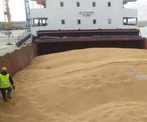 https://www.tp24.it/immagini_articoli/13-09-2020/1599988150-0-attiva-sicilia-piu-controlli-sul-grano-importato.jpg