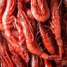 https://www.tp24.it/immagini_articoli/16-06-2021/1623859446-0-blocco-della-pesca-del-gambero-rosso-nel-mar-tirreno-la-preoccupazione-del-distretto.jpg