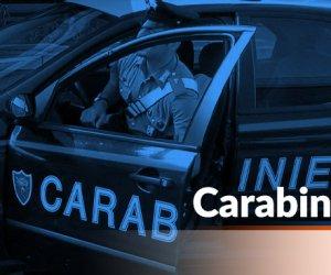 https://www.tp24.it/immagini_articoli/18-09-2020/1600423163-0-due-auto-a-fuoco-a-campobello-di-mazara-nbsp.jpg