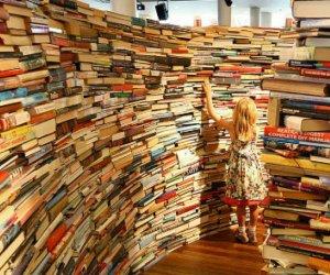 https://www.tp24.it/immagini_articoli/20-12-2020/1608441715-0-i-libri-che-hanno-costruito-il-2020.jpg