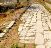 https://www.tp24.it/immagini_articoli/25-07-2021/1627199652-0-i-siti-archeologici-di-marsala-li-gestisca-direttamente-nbsp-il-sindaco.jpg