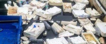 https://www.tp24.it/immagini_articoli/25-10-2021/1635172454-0-trapani-il-porto-peschereccio-liberato-dai-materiali-inquinanti.jpg
