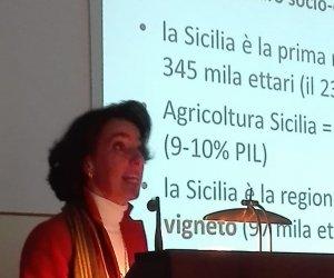 https://www.tp24.it/immagini_articoli/26-01-2019/1548485619-0-jose-rallo1-limportanta-capitale-sociale-quadro-economico-sicilia.jpg