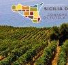 https://www.tp24.it/immagini_articoli/27-02-2021/1614457585-0-in-calo-tutte-le-nbsp-doc-sicilia-38-mila-ettolitri-di-vino-in-meno-nbsp.jpg