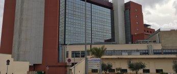 https://www.tp24.it/immagini_articoli/30-03-2020/1585568721-0-covid-hospital-marsala-curto-scelta-ragionata-condivisa.jpg